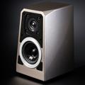 Test: Wilson Audio Tune Tot