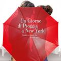 Un giorno di pioggia a New York | la recensione
